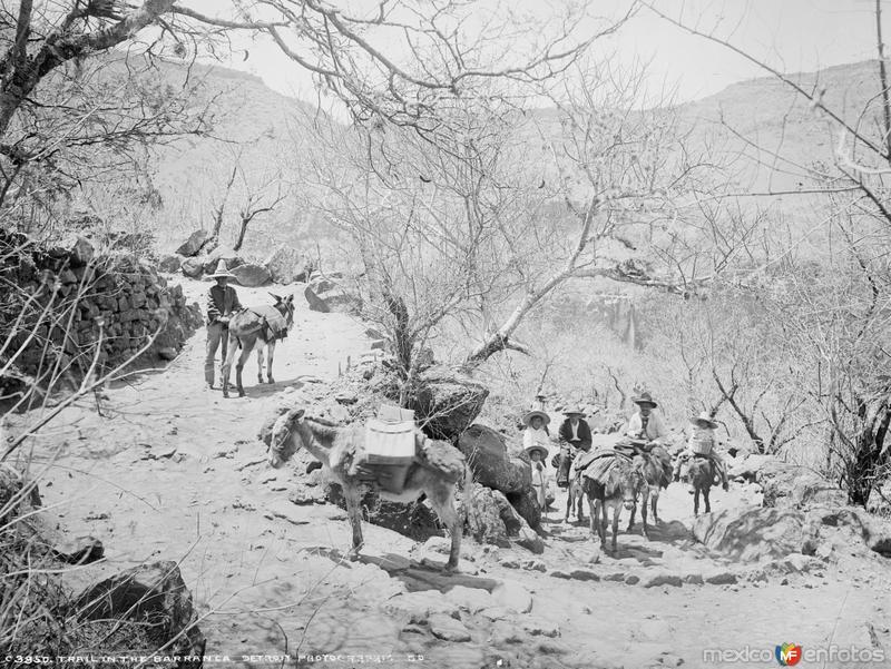 Camino en la Barranca de Oblatos (por William Henry Jackson, c. 1887)