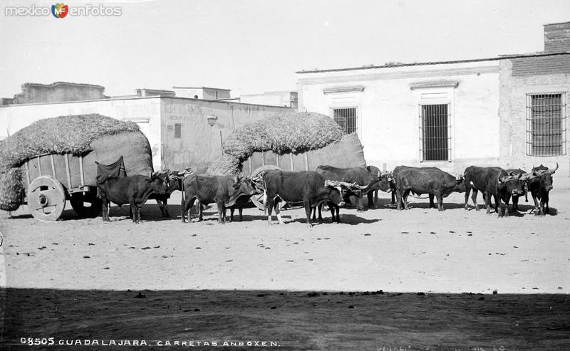 Carreta de bueyes en Guadalajara (por William Henry Jackson, c. 1887)