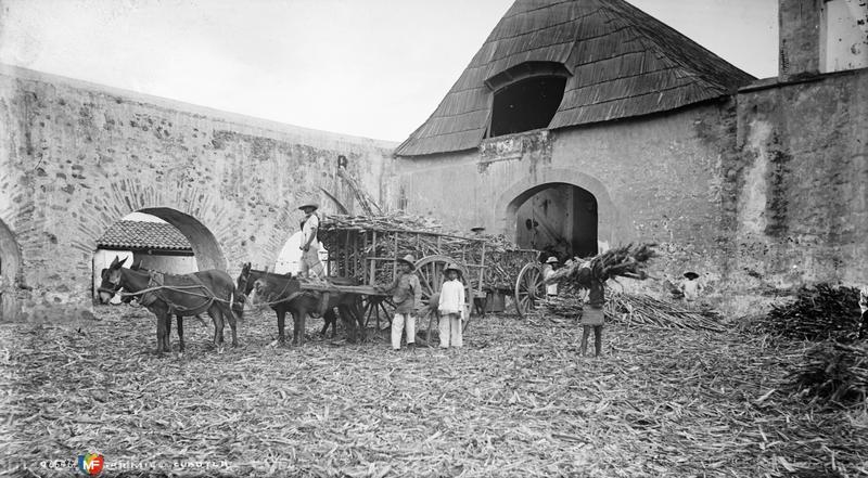 Ingenio azucarero (por William Henry Jackson, c. 1888)
