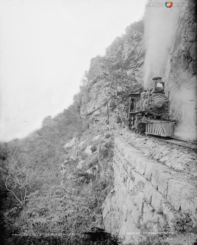 Viaducto del Ferrocarril (por William Henry Jackson, c. 1888)