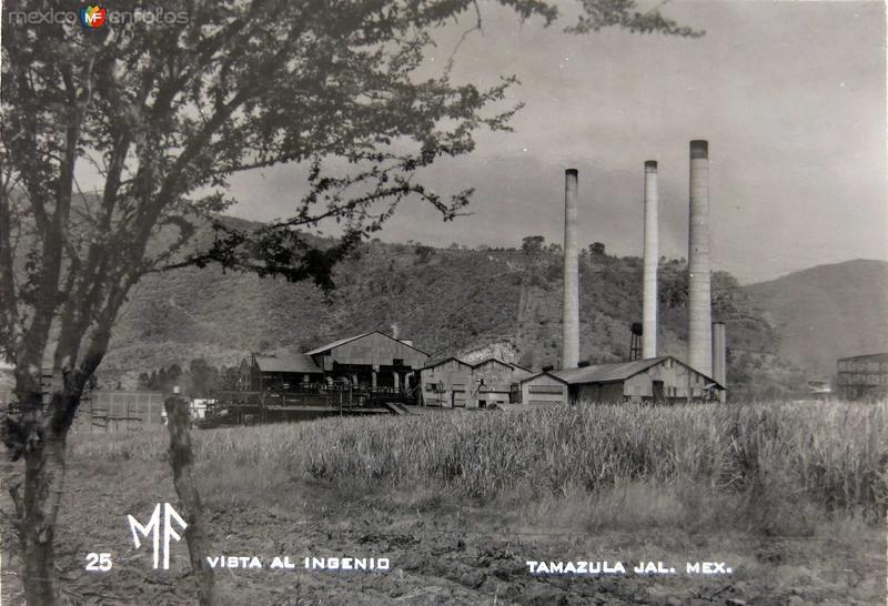 Fotos de Tamazula de Gordiano, Jalisco, México: INGENIO AZUCARERO Hacia 1945