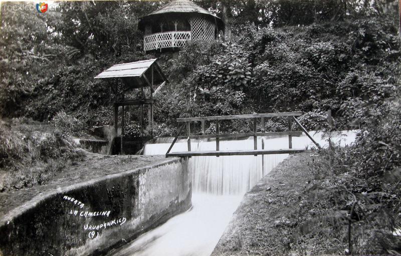 HUERTA LA CAMELINA Hacia 1940