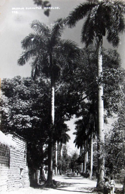 PAISAJE Hacia 1945