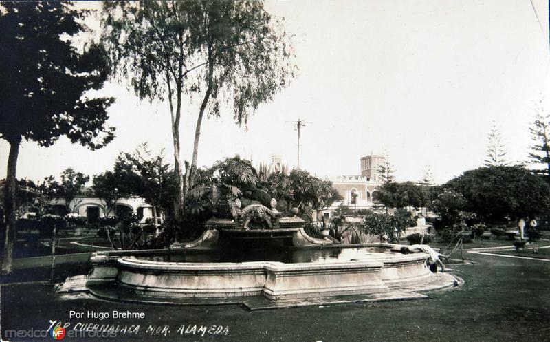JARDINES Y FUENTE EN LA ALAMEDA por el fotografo HUGO BREHME Hacia 1930