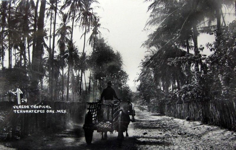 VEREDA TROPICAL PANORAMA Hacia 1945