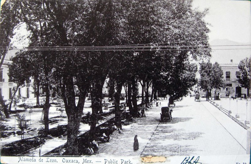 ALAMEDA DE LEON PANORAMA Hacia 1909