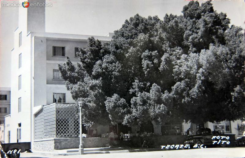BAJO LA SOMBRA Circa 1930-1950