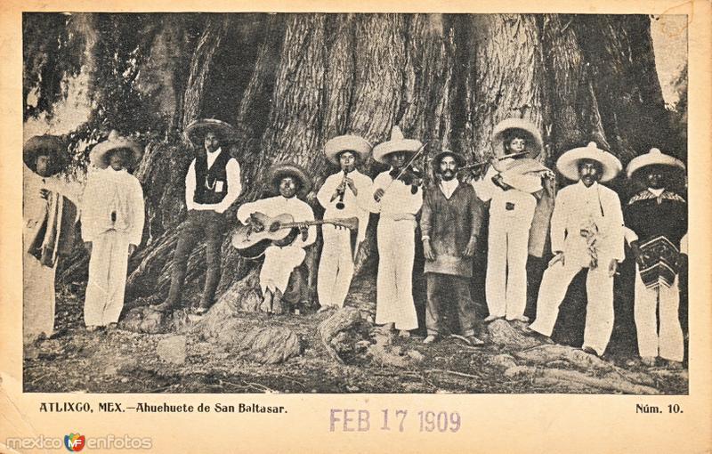 Músicos frente a un ahuehuete en el pueblo de San Baltazar Atlimeyaya