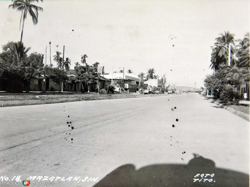 AVENIDA Circa 1930-1950