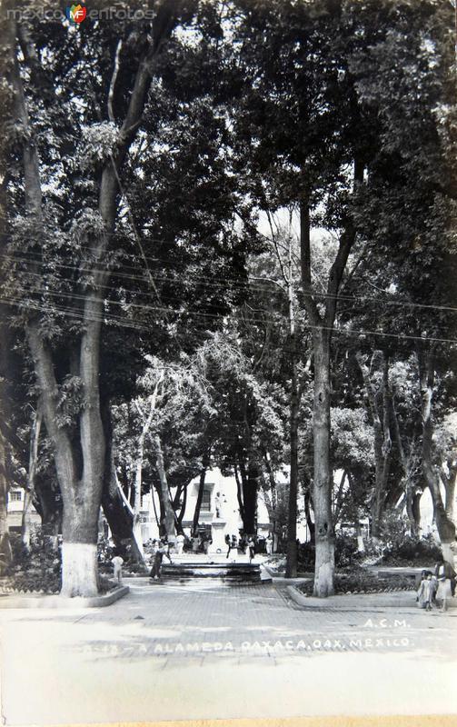 LA ALAMEDA Circa 1930- 1950