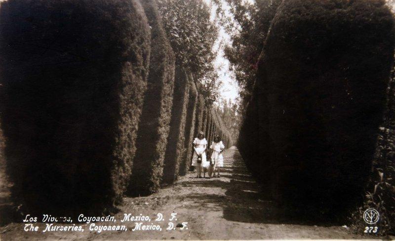 VIVEROS DE COYOACAN Circa 1930-1950