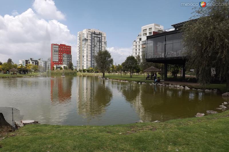 Lago en el Jardín del Arte. Septiembre/2015