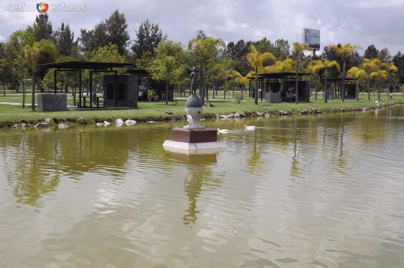 Lago y escultura, Jardín del arte. Septiembre/2015