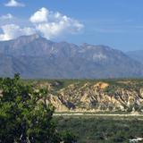 Vista hacia la Sierra La Laguna