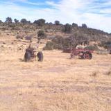 tractores viejos en lasierra de parre�os.
