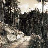 Camino al Volcán Nevado de Toluca