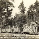 Campamento de La Laja, Compañía de las fábricas de papel de San Rafael. Tren bajando leña.