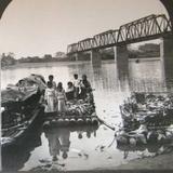 Balsas de troncos en el río Papaloapan