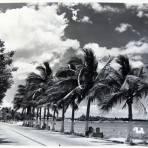 El Malecon Hacia 1945