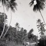 Calzada del pital Hacia 1945