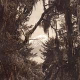 El Popocat�petl, desde el Sacromonte (circa 1920)