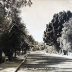 Calle Porfirio Diaz Circa 1945