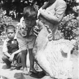 Fuente parque Revolucion  Hacia 1945