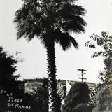 Plaza de Armas Hacia 1945