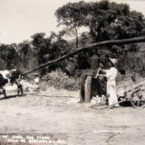 Molino de Caña Hacia 1945