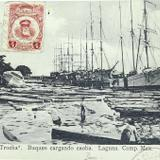 Buques cargando Caoba Hacia 1918