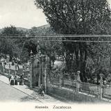 Alameda de Zacatecas
