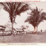 Hacienda Cullen Pearson Rubber Farm: La Plaza