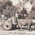 TIPOS MEXICANOS UNA CARRETA Hacia 1945