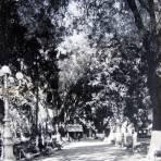 EL ZOCALO Hacia 1945