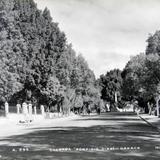 CALZADA PORFIRIO DIAZ Hacia 1939