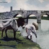 TIPOS MEXICANOS Aguador Hacia 1909