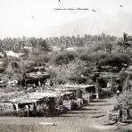 CAMINO DE COLIMA A MANZANILLO Circa 1920-1930