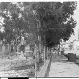 Calle Guanajuato