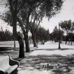 AVENIDA JUAREZ Circa 1930-1950
