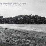 RANCHO PLATANITOS Circa 1900-1920