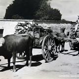 TIPOS MEXICANOS VENDEDOR DE LENA Circa 1930-1950
