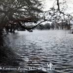 LAGO DE CAMECUARO Circa 1930-1950