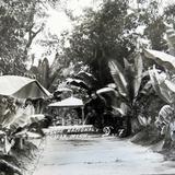 Parque Nacional hacia 1930-1950