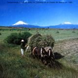Transportando hoja de Milpa en el Estado de Mexico en 1966