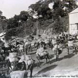 Tipos Mexicanos Arrieros con cargamento de Maiz Circa 1900-1920