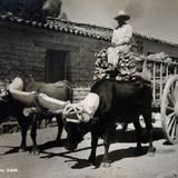 Tipos Mexicanos  Carretero  Circa1930- 1950