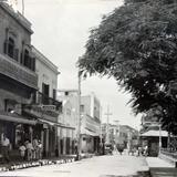 Avenida Flores Panoramica circa 1930-1950