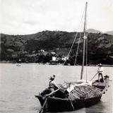 Cargamento de ? Entre 1930-1950