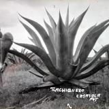 Tipos Mexicanos Tlachiquero Alla por 1930-1950