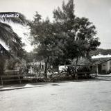 El Parque Alrededor de 1940-1960